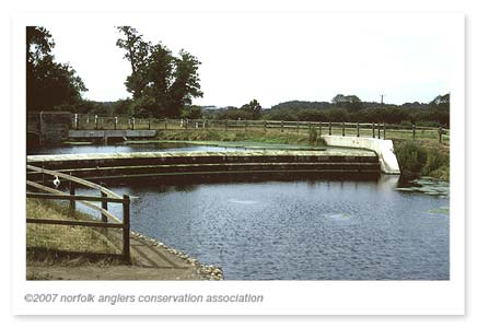 The reason why WAG was created, the Wensum became a pond!