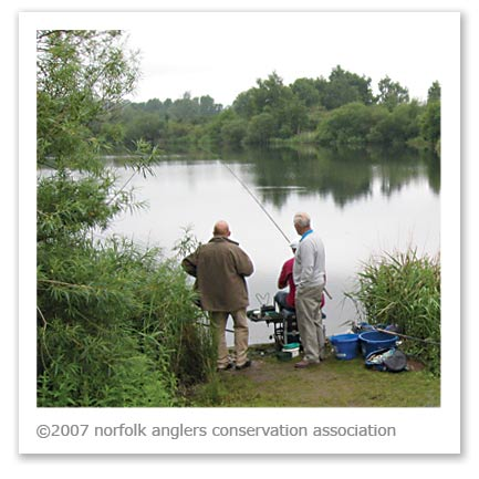 A wide variety of fisheries and species are available to NACA members.