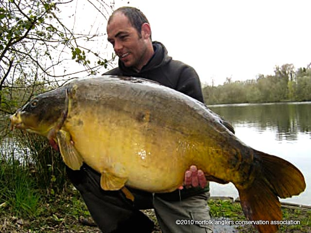 Zak with Kingfisher's 'Zak's fish' at 41 lbs 14ozs