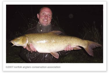 Super Wensum barbel for Steve